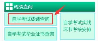 新疆2020年8月(原4月)本科自考考试成绩什么时间公布?成绩查询官网是?